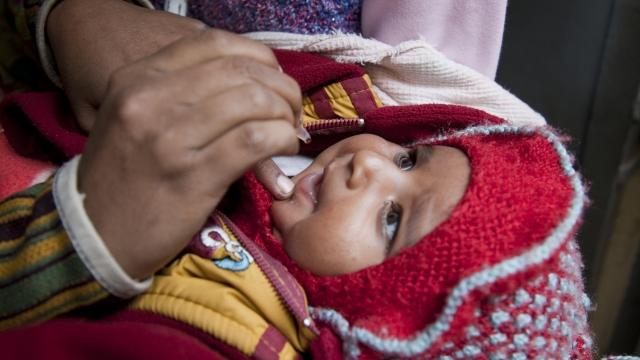 L'ONU plaide pour un vaccin accessible à tous — Coronavirus