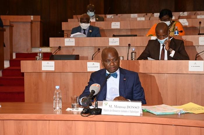 Cote d'Ivoire: un code de la santé publique vétérinaire voté - YECLO.com